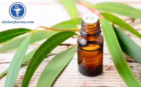 Tình dầu tràm được chiết xuất từ là của cây tràm lá dài(Melaleuca leucadendra