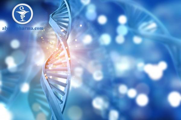 Yếu tố di truyền