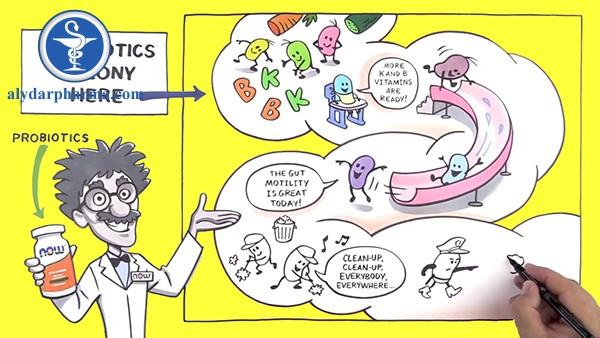Sử dụng Men vi sinh (probiotics)- Lợi hay hại ?