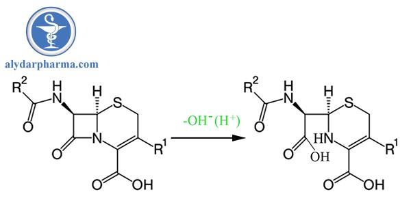 Thủy phân vòng betalactam của Cephalosporin
