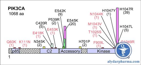 FDA phê duyệt thuốc đầu tiên ức chế PI3K trong điều trị ung thư vú