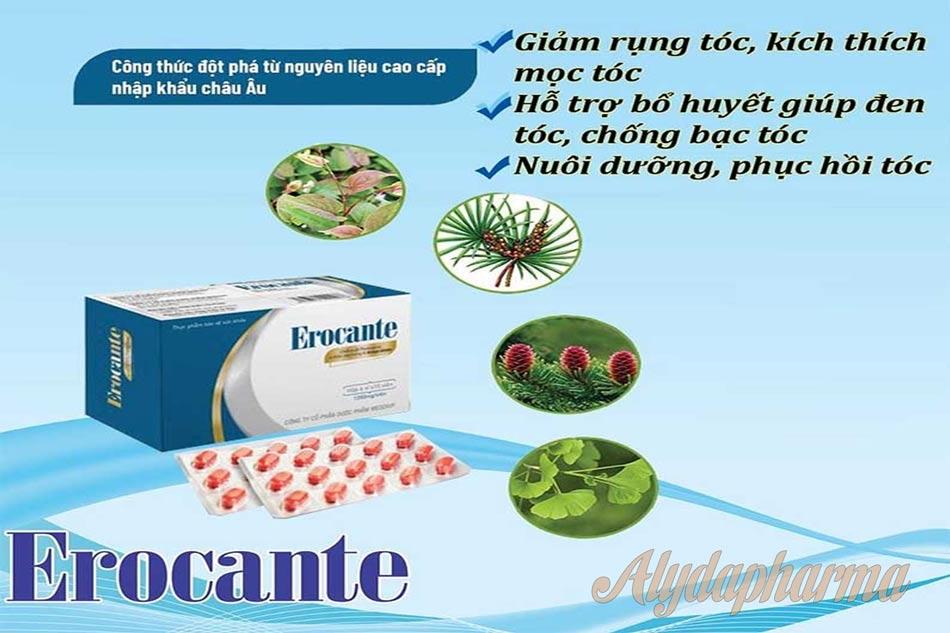 Thành phần Erocante từ tự nhiên